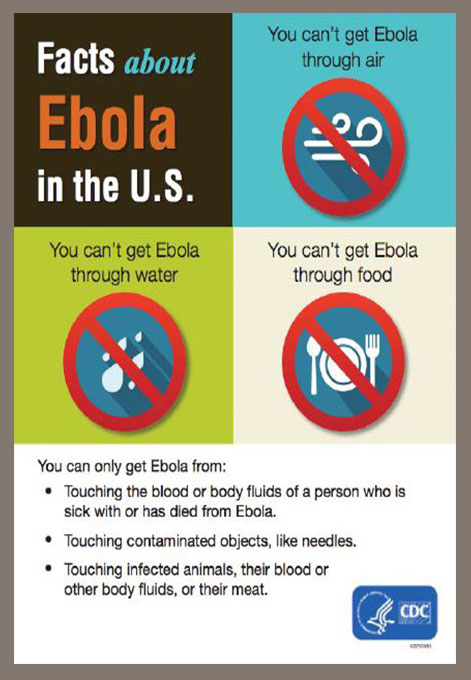 Facts about Ebola in the U.S.: You can't get Ebola through air. You can't get Ebola through water. You can't get Ebola through food. You can only get Ebola from: Touching the blood or body fluids of a person who is sick with or has died from Ebola. Touching contaminated objects, like needles. Touching infected animals, their blood or other body fluids, or their meat.